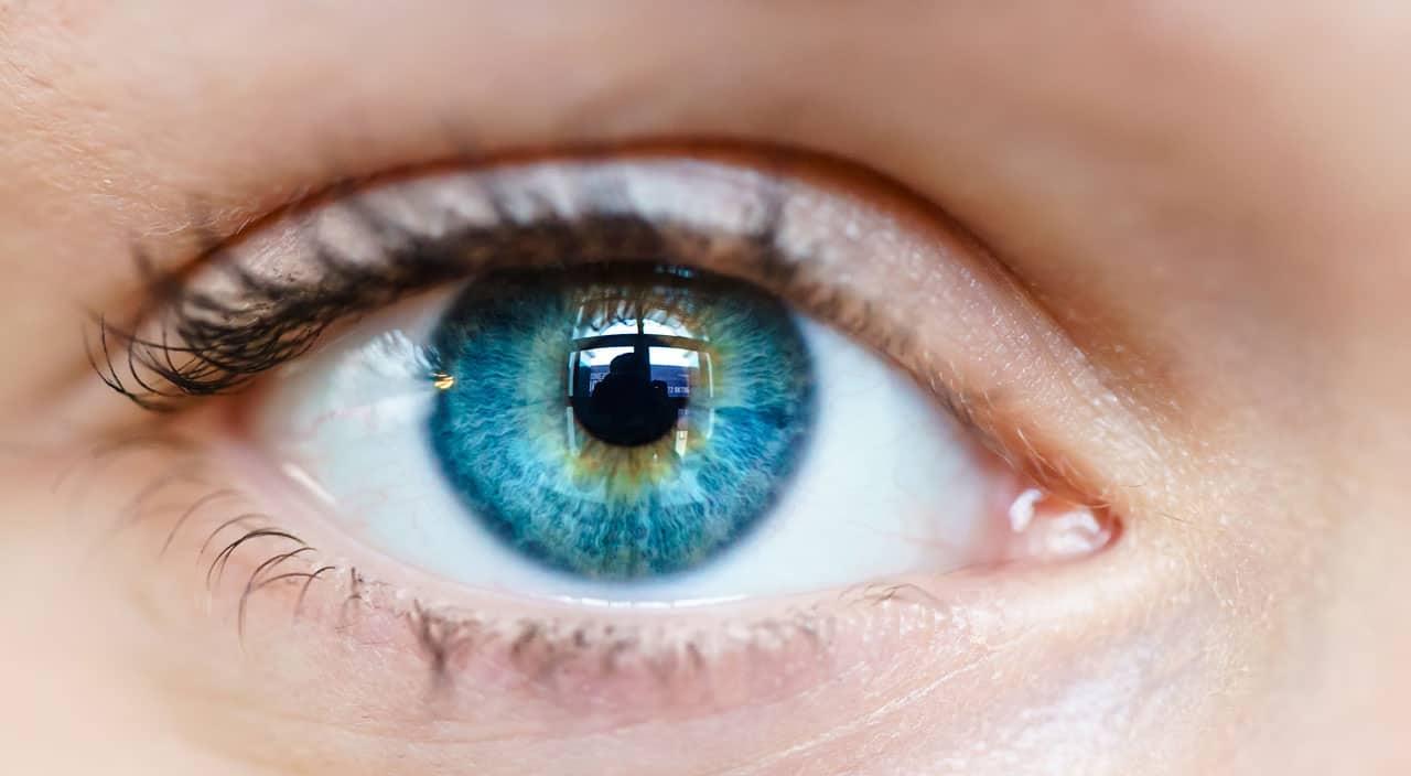 Macro Image Human Eye